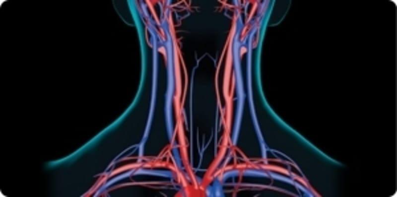 dupleks-kolor-dopler-krvnih-sudova